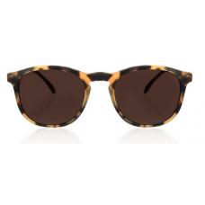 Óculos Sol Illesteva HUDSON TORTOISE